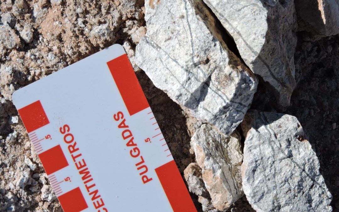 Pampa Metals' Partner – Chilean Gold Producer Austral Gold, Begins Exploration at Pampa Metals' Morros Blancos Project